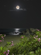 Moonlight Beach by Icetea1234567 via Photopin.  CC BY 2.0