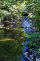 9 8 2014 caledonia creek 5