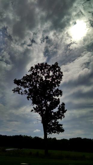 9 8 2014 lone tree gettysburg 5