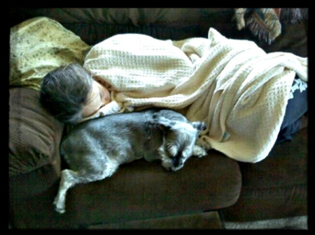 Napping with the old dog ... and we both look a bit frosty ...
