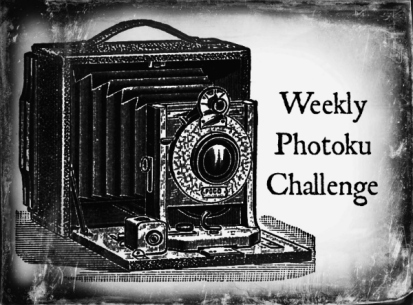 Weekly Photoku Challenge Badge