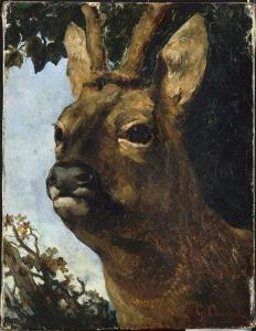 Gustave Courbet. Head of a Young Doe, n.d. WikiArt.