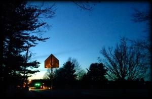 3 18 2015 evening street stop light green light tree branch silhouette sign 2