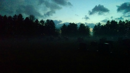cemetery fog 1