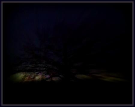 cemetery fog lightning tree
