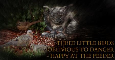 three little birds haiga
