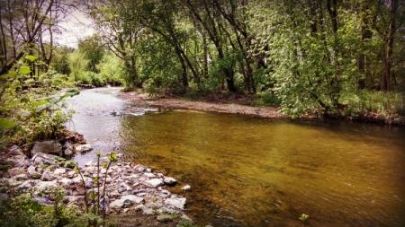 conococheague creek wilson