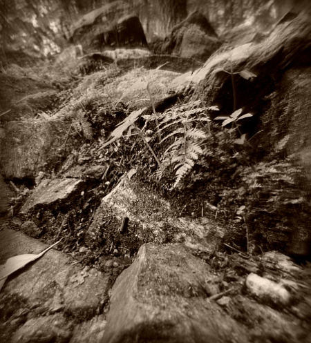 rocks caledonia