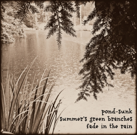 pond-sunk