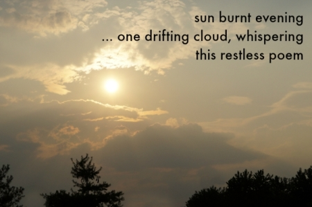 sun burnt evening haiga