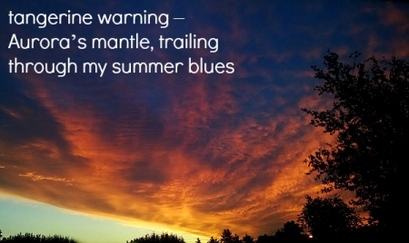 tangerine warning