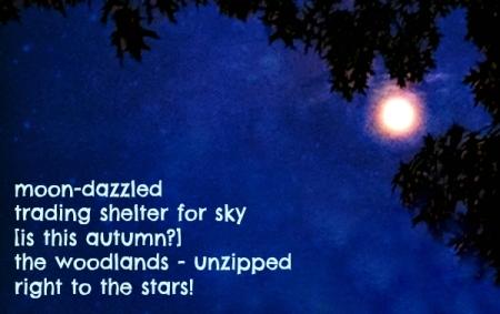 moon-dazzled