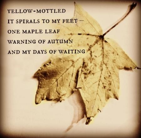 yellow-mottled haiga